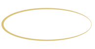 Tampa Bay Auto Network Homepage - Logo