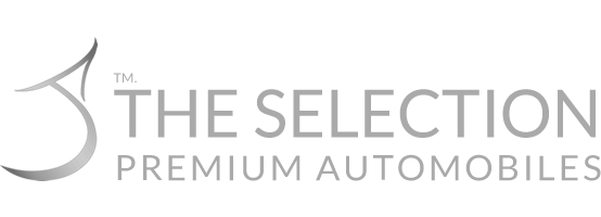 The Selection Homepage - Retina Logo